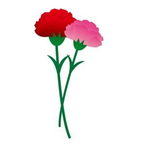 20150421花