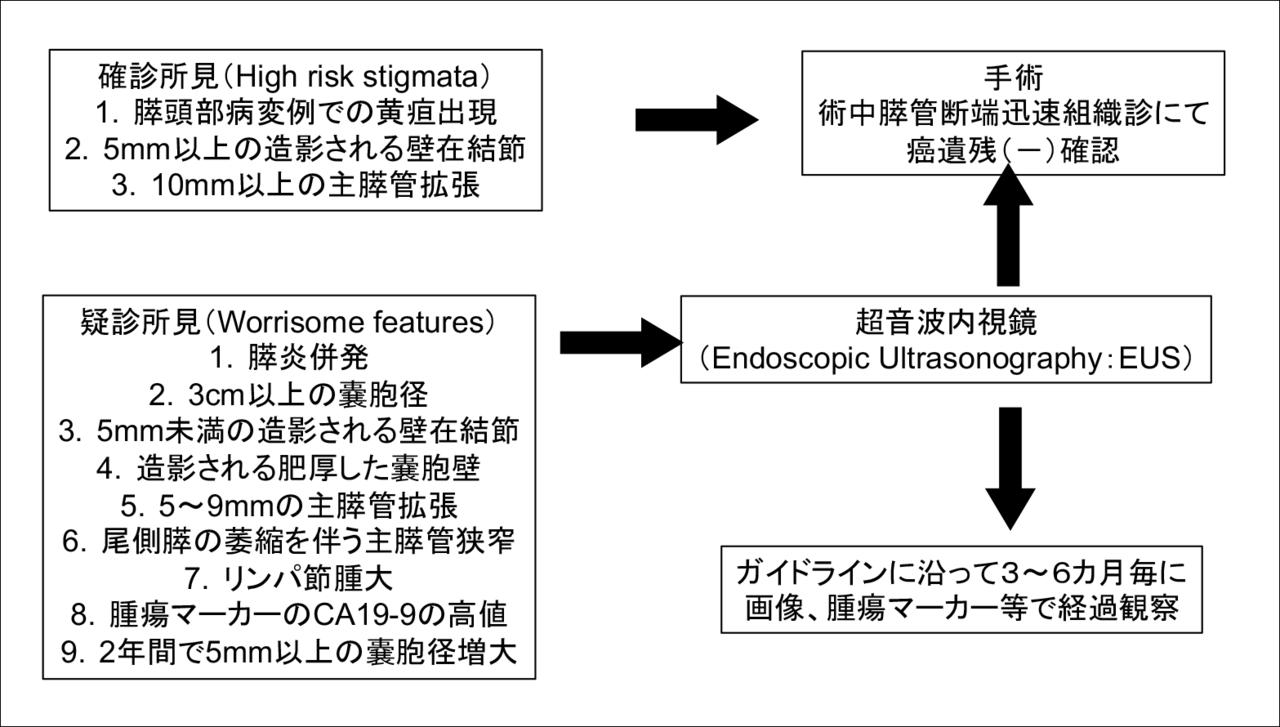 図5 関西労災病院におけるIPMN治療方針